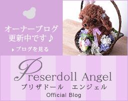 プリザドール・エンジェル公式ブログ