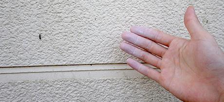 壁に白い粉